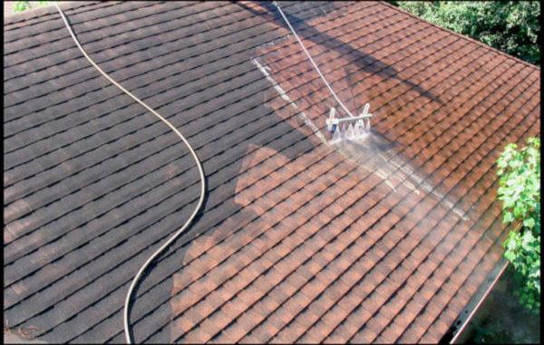 démoussage toiture
